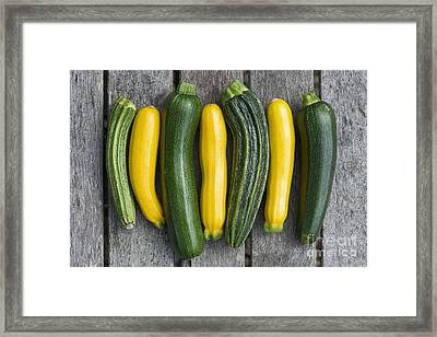 Courgette Harvest Framed Print by Tim Gainey