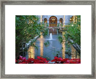 Courtyard Garden Framed Print by D Hackett