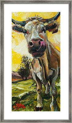 Cow 1 Framed Print by Claire Kayser