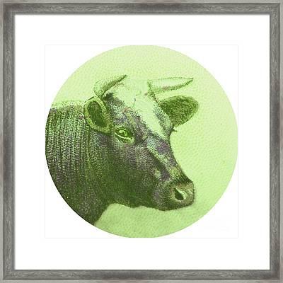 Cow II Framed Print by Desiree Warren