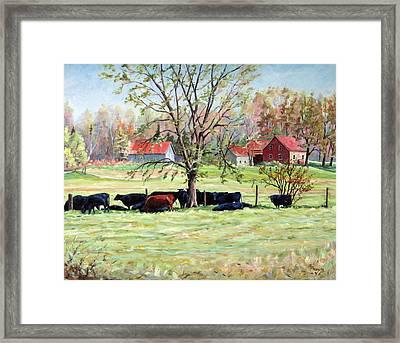 Cows Grazing In One Field  Framed Print by Richard T Pranke