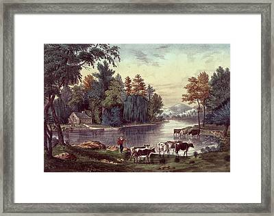 Cows On The Shore Of A Lake Framed Print by Currier and Ives