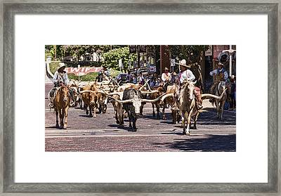 Cowtown Cattle Drive Framed Print by Stephen Stookey