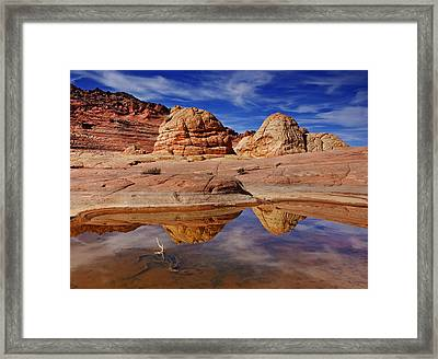 Coyote Butte Reflections Framed Print by Mike  Dawson