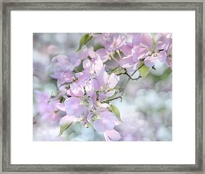 Crab Apple Blossoms Framed Print by Theresa Tahara