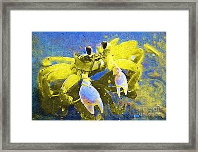 Crabby And Cute Framed Print by Deborah MacQuarrie-Haig
