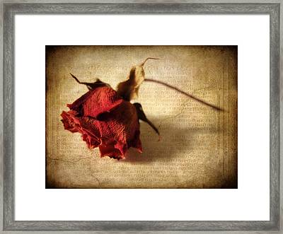 Crackling Rose Framed Print by Jessica Jenney