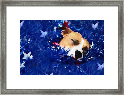 Cradled By A Blanket Of Stars And Stripes Framed Print by Shelley Neff