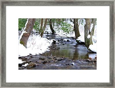 Craig Run Framed Print by Thomas R Fletcher