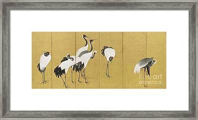 Cranes Framed Print by Maruyama Okyo