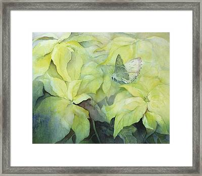 Cream Poinsettia With Butterfly Framed Print by Karen Armitage