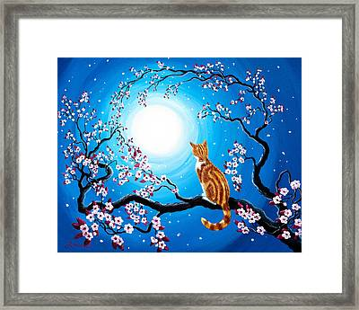 Creamsicle Kitten In Blue Moonlight Framed Print by Laura Iverson