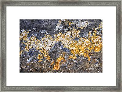 Creation Framed Print by Tim Gainey