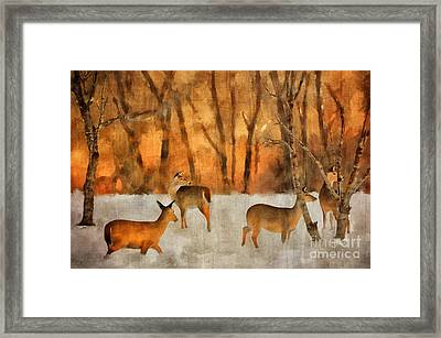 Creatures Of A Winter Sunset Framed Print by Lois Bryan