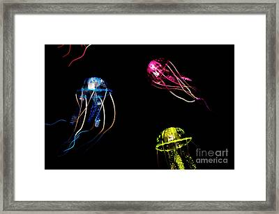 Creatures Of The Deep Framed Print by Jorgo Photography - Wall Art Gallery