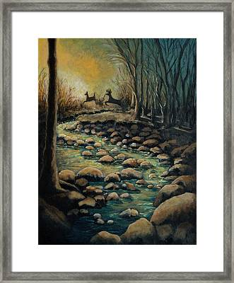 Creek Framed Print by Kimberly Benedict