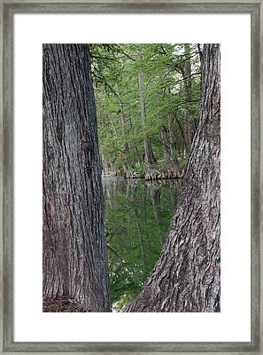 Creek Reflections Framed Print by James Woody