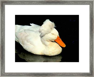 Crested White 4 Framed Print by Lanjee Chee