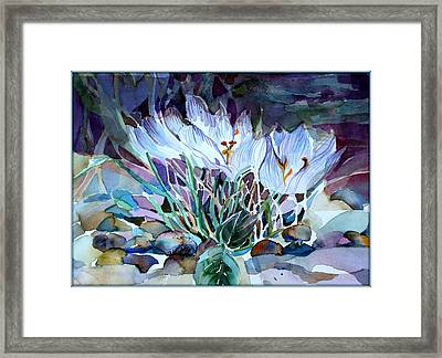Crocus Saffron Framed Print by Mindy Newman