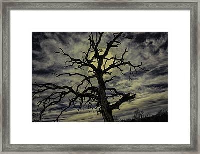 Crooked Sky Framed Print by David Longstreath