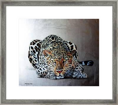 Crouching Leopard Framed Print by Susana Falconi
