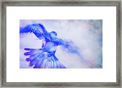 Crow In Flight Framed Print by Theresa Tahara