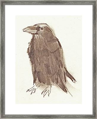 Crow Framed Print by Sarah Lane