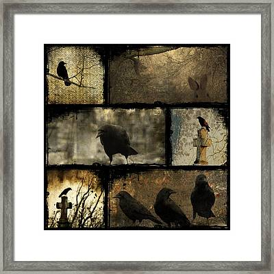 Crows And One Rabbit Framed Print by Gothicolors Donna Snyder