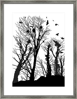 Crows Roost 1 - Black And White Framed Print by Philip Openshaw