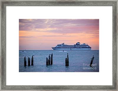 Cruise Ship At Key West Framed Print by Elena Elisseeva
