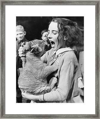 Cub Roar Framed Print by Fox Photos