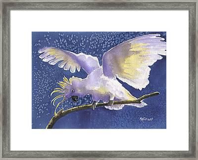 Cuckoo Cockatoo Framed Print by Marsha Elliott