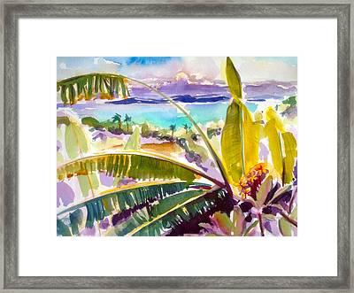 Culebra And Bananas Framed Print by Barbara Richert