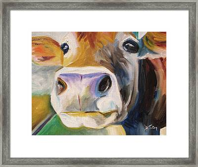 Curious Cow Framed Print by Donna Tuten