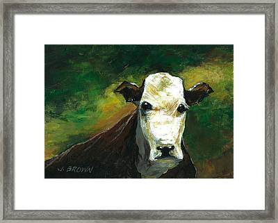 Curious Cow Framed Print by John Brown
