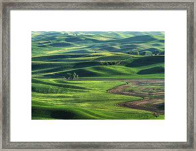 Curves Of The Palouse Framed Print by Mark Kiver