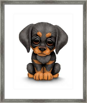 Cute Doberman Puppy Dog Framed Print by Jeff Bartels