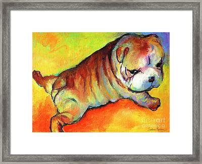 Cute English Bulldog Puppy Dog Painting Framed Print by Svetlana Novikova