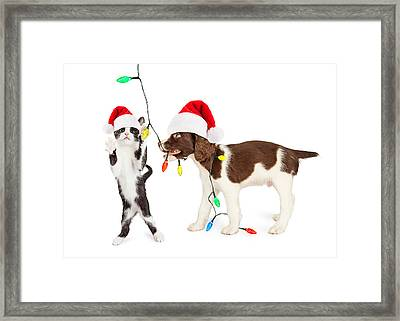 Cute Kitten And Puppy Playing With Christmas Lights Framed Print by Susan Schmitz