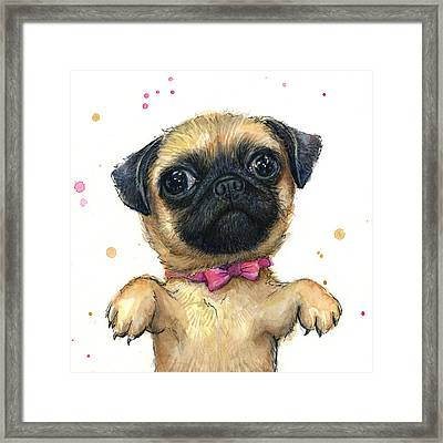 Cute Pug Puppy Framed Print by Olga Shvartsur