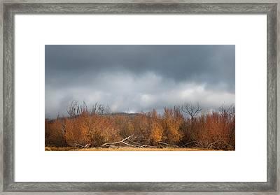 Cuyamaca Autumn Framed Print by Joseph Smith