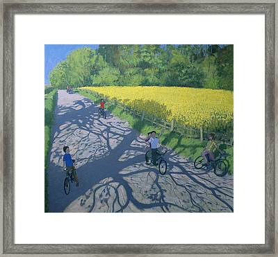 Cyclists And Yellow Field Framed Print by Andrew Macara