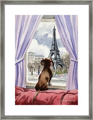 Dachshund In Paris Framed Print by David Rogers
