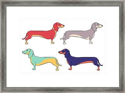 Dachshunds Framed Print by Kelly Jade King