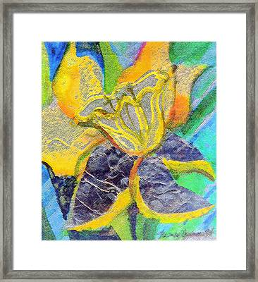Daffodil Abstract Framed Print by Mindy Newman