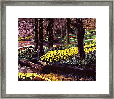 Daffodil Park Framed Print by David Lloyd Glover