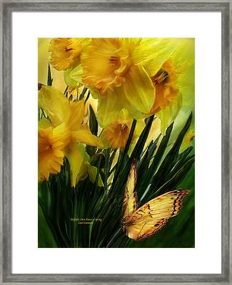 Daffodils - First Flower Of Spring Framed Print by Carol Cavalaris