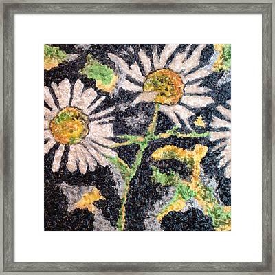 Daisy 2 Framed Print by Amanda Schambon