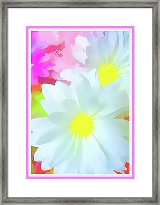 Daisy Poster Framed Print by Susan Lafleur