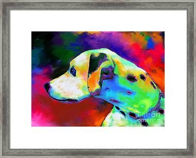 Dalmatian Dog Portrait Framed Print by Svetlana Novikova
